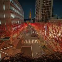 Colorful path: Illumination designer Satoshi Uchihara needed special permission before using red lights for his winter display in Roppongi, Tokyo. | TOSHIO KANEKO