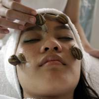 Snails slide into Thai spa scene