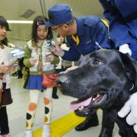 Tokyo's K-9 cops featured on doggy calling cards