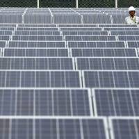 A worker stands amid solar panels manufactured by Sharp Corp. at the SoftBank Yaita Solar Park in Yaita, Tochigi Prefecture, in August 2013. | BLOOMBERG