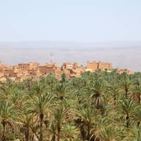 Clay oasis: Nkob in Morocco's Draa Valley boasts casbahs and groves of date palms. | AP