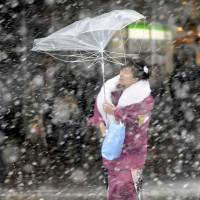 Dumb luck: A young woman walks to her Coming-of-Age Day celebration amid snow and wind last year. Judging by others' experiences, a broken umbrella may be the least of her problems. | KYODO