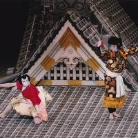 NT adds a new twist to its 'dogs tale'
