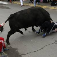 American youth seriously gored by bull during Spanish Carnival