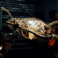 Sights from the 18th Japan Media Arts Festival