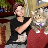 Teen who gained fame over laser cat portrait commits suicide