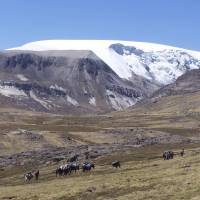 The north dome of the Quelccaya Ice Cap in Peru is seen in this handout photo from Ohio State University taken in 2003.   REUTERS