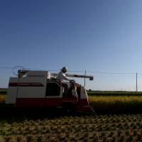 A combine harvester plucks rice and straw in Sakura, Chiba Prefecture, in August 2013. Prime Minister Shinzo Abe's drive to reform the Japan Agricultural Cooperatives group is seen as a first step in overhauling the sector. | BLOOMBERG
