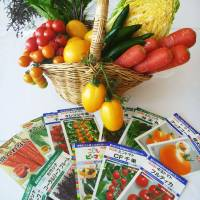 Packets of functional-vegetable seeds marketed by Kyoto's Takii & Co. are arranged for a photo with the final product. | KYODO
