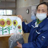 Chikako Miura, who heads a nonprofit workshop in Nihonmatsu, Fukushima Prefecture, displays a bag of sunflower seeds Feb. 5. The drawing is by students at an elementary school in Nagano Prefecture. | KYODO