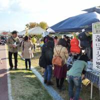 Visitors at the 'Come Come Hanicotto' festival inspect souvenir stalls in a park surrounding the Imashirozuka Kofun tumulus in Takatsuki, Osaka Prefecture, on Nov. 23. | KYODO