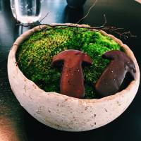 Sweet pairings: Chocolate covered mushrooms with wild cinnamon sticks, at Noma in Tokyo. | MARK THOMPSON