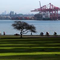 Dangerous workout?: Cyclists pass a man jogging on the seawall in Vancouver, Canada. A recent study showed that vigorous running may be harmful to your health over time. | AP