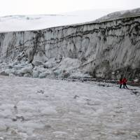 Critters found in Antarctic ice show tenacity of life