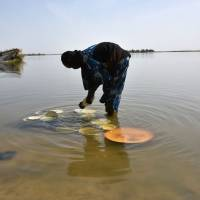 Niger, Chad forces attack Boko Haram positions on Lake Chad