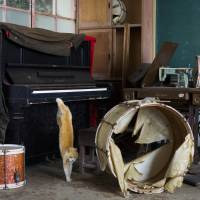 A stray cat jumps off a piano in the music room of a derelict school on Aoshima Island in Ehime Prefecture on Feb. 25. | REUTERS