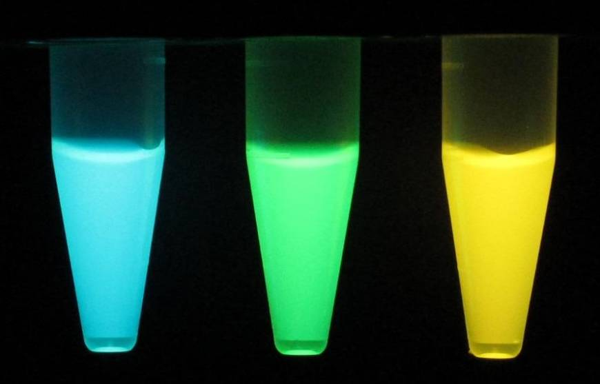 Japanese team develops proteins that glow