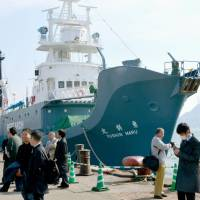 Japanese whaling ships return home from Antarctic with no catch