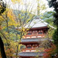 The three-story pagoda of Kiyomizu Temple near Miyama. | MANDY BARTOK