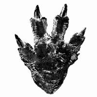 Heavy-footed: Toho have released an image of the footprint of the newest incarnation of 'Godzilla' — the tallest yet monster in the franchise.  | TOHO CO., LTD.