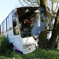 A passenger bus that was carrying South Korean tourists is seen after it struck a tree along Route 212 in Kumamoto Prefecture on Wednesday afternoon. | KYODO