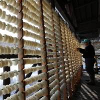 Traditional dried daikon bound for Milan expo