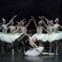 Natasha Oughtred as Odette, with Jamie Bond as Prince Siegfried, in the BRB's 'Swan Lake.' | BILL COOPER