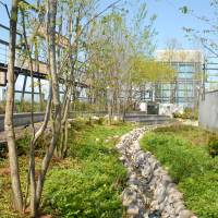 The new Toshima Ward Office has a garden on the 10th floor and a terrace on the eighth, sixth and fourth floors for visitors. | TOSHIMA WARD OFFICE
