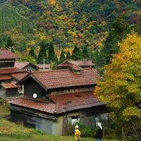 Two men look at autumn leaves over rooftops near Kaga in Ishikawa Prefecture. | KYODO