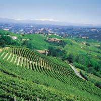 A landscape of hills, villages and vineyards | ENTE TURISMO ALBA BRA LANGHE ROERO
