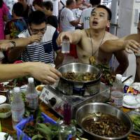 China's dog meat festival draws rare criticism