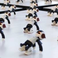 A hundred humanoid communication robots called Robi perform a synchronized dance during a promotional event called 100 Robi, for the Weekly Robi Magazine, in Tokyo in this Jan. 20, 2015 file photo.  | REUTERS