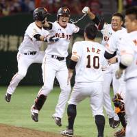 Yoshiyuki Kamei (second from left) and his Giants teammates celebrate their walk-off victory over the Carp on Tuesday night at Tokyo Dome. Kamei hit the game-winning sacrifice fly in Yomiuri's 2-1 triumph over Hiroshima.   KYODO