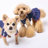 From dog coats to toilet paper, Nadeshiko fever hits stores ahead of World Cup final