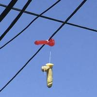 Two adult toys hang over power lines above a residential street in Portland, Oregon, on Monday. Hundreds of phallic sex toys have been seen hanging in recent days from power lines across Portland, provoking laughter and blushes. Strung together in pairs, the objects have prompted numerous reports to the Portland Office of Neighborhood Involvement.   REUTERS