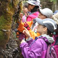 Moss-viewing trips catching on among women