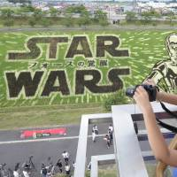 Rice paddy art in Inakadate, Aomori Prefecture, features 'Star Wars' characters C-3PO and R2-D2. | KYODO