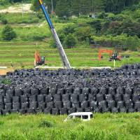 Fukushima scrub-down aims to make villages safe, although woods may remain no-go zones