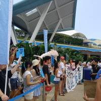 Civil society: Activists protest against the keeping of captive dolphins at the Ocean Park Hong Kong marine theme park. | SUZETTE ACKERMAN