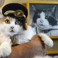 Nitama, which succeeded Tuesday to the position of stationmaster of Kishi Station in Kinokawa, Wakayama Prefecture, poses with a portrait of her famous predecessor, Tama.   KYODO