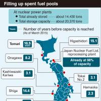Nuclear restart highlights government dilemma over lack of waste disposal sites
