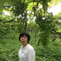Additive free: Noriko Kishihira, from the Takeda winery in Yamagata Prefecture, ensures her grapes are grown sans soufre, without added sulfites. | FRANCIOS DUMAS