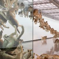 There's a residual energy to Cai Guo-Qiang's explosive works