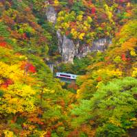 Naruko-kyo gorge turns splendid shades of red and gold in autumn. | MANAMI OKAZAKI