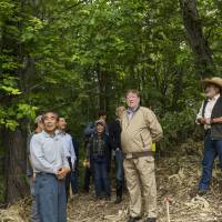 In the thick of it: C.W. Nicol (center) tours the Niki Hills Winery Woodland with Mr. Yamada (left), a local forester, and DAC Group CEO Kazunori Ishikawa (right). | YUKIO TADA