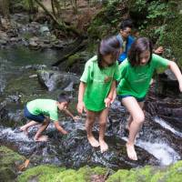 Participants in the inaugural Moriumius summer camp clamber up a mountain stream in Ogatsu, Miyagi Prefecture, last month. | ROB GILHOOLY