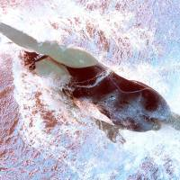 Ledecky off to golden start