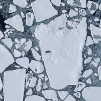 An aerial survey from April 2008 shows broken ice in the Bering Sea. | AP