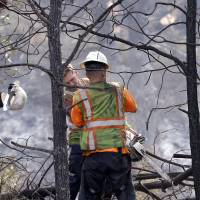 A utility worker's hard hat flies off as he cuts back trees as stumps continue to smolder behind him following a wildfire several days earlier, Tuesday in Middletown, California. | AP
