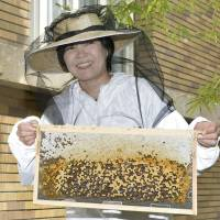 First lady Akie Abe harvests first honey from Prime Minister's Official Residence garden
